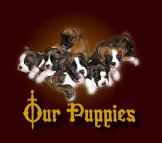 Click to see our puppies of 2007